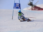 Skiers asked to support Olympic stars