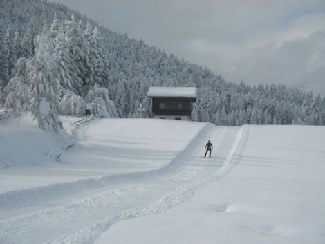 The cross-country trails in Seefeld are already open