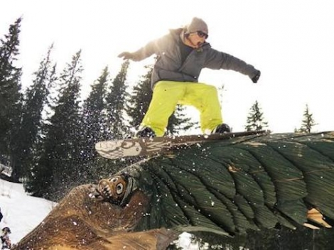 Snowboarding is on the decline, according to a new survey from the US